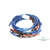 Wireworld Oasis 7 Bi-wire 3 meter (10') virtually new demo pair