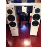 Dynaudio surround system, Contour speaker package